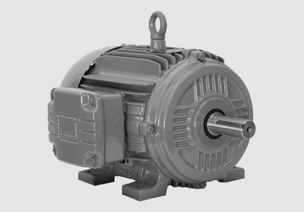 Marley Duty Motor